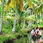 kerala tourism information